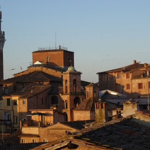 Torre del Mangia and Siena's roof tops