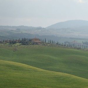 collines et la campagne toscane