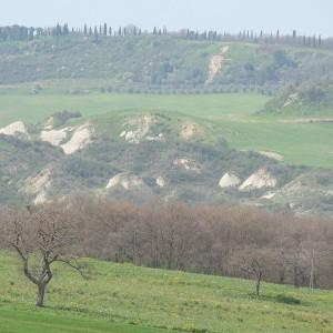 Colline e campagna toscana